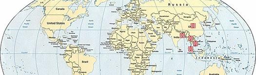 Vươn tầm quốc tế và phát triển bền vững